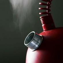 La cuisson à la vapeur